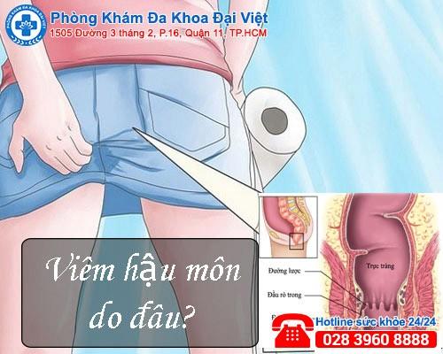 Nguyên nhân gây nên tình trạng viêm hậu môn-phòng khám đa khoa đại việt