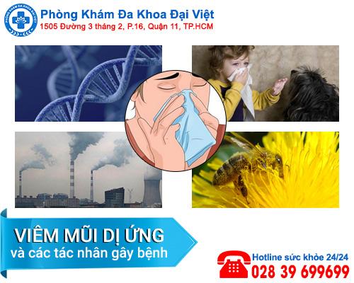 Viêm mũi dị ứng và các tác nhân gây bệnh - Đa Khoa Đại Việt